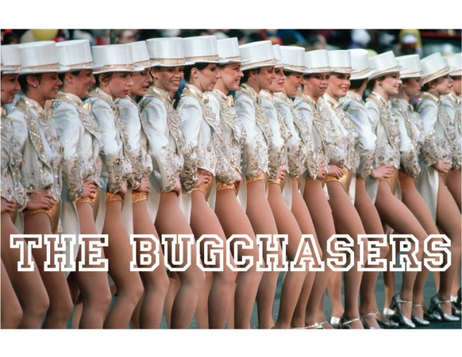 Bugchasers